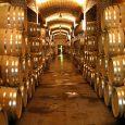 Cava, Toneles de Vino, Provincia de Mendoza