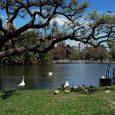 Parque Tres de Febrero, Palermo, Ciudad de Buenos Aires